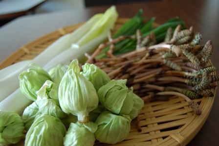 0310山菜