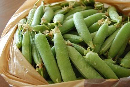 えんどう豆