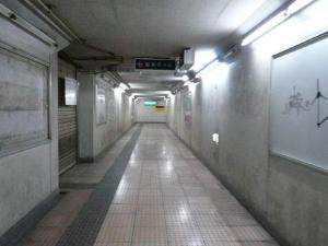 P1350080.jpg
