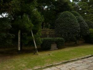 P1380304.jpg