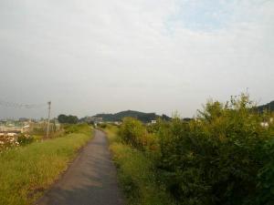 P1410281.jpg