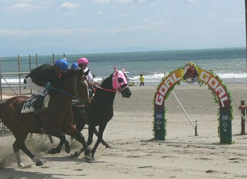 20090426 (21) 2R以降はおっきな馬です