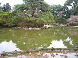 梅宮神社 庭1