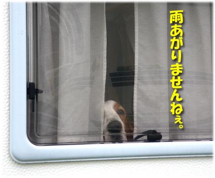 06_shima01.jpg