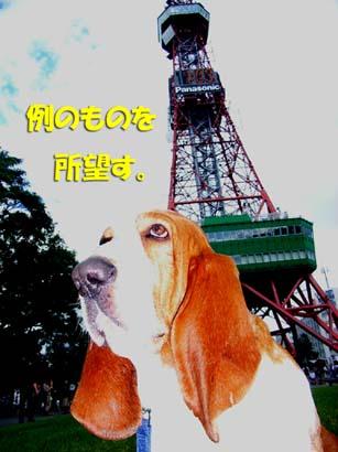 2008_09_odori04.jpg