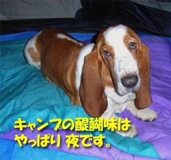 2008_09_teshio13.jpg