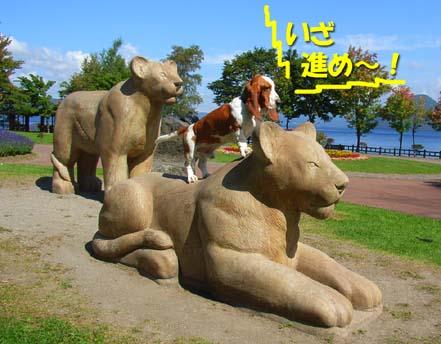 2008_09_toya02.jpg