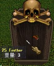 feather4.jpg