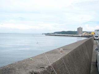 横須賀 釣り 727 003