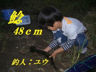 IMAGE009_20091010203944.jpg