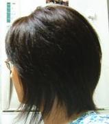 20050806_3