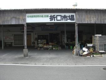 折口市場1