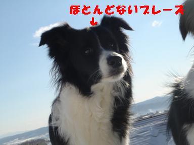 DSC04842.jpg