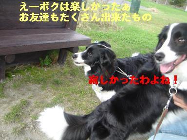 DSC05808.jpg