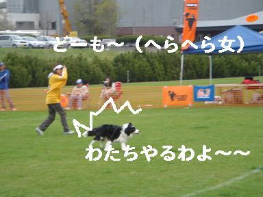 DSC05922.jpg