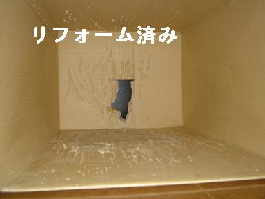 DSC06133.jpg