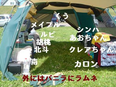 DSC06544.jpg