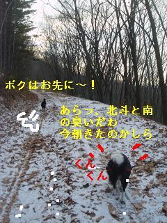 DSC07586.jpg