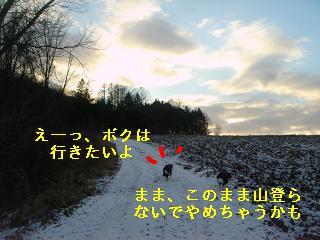 DSC07593.jpg
