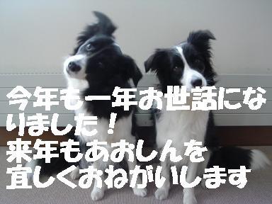 DSC07741.jpg