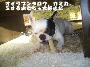20050225113538.jpg