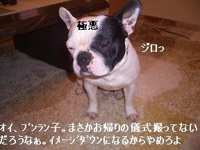 20050311121702.jpg