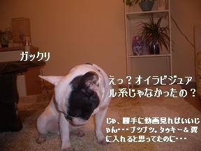 20050311121719.jpg