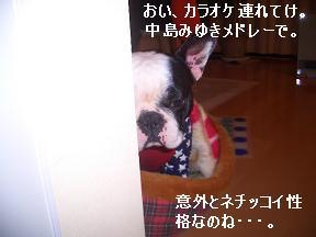 20050315113643.jpg