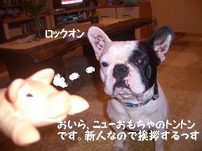 20050322232923.jpg