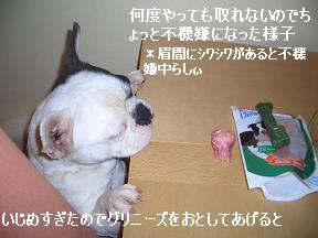 20050328104104.jpg
