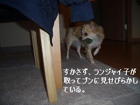 20050328104119.jpg