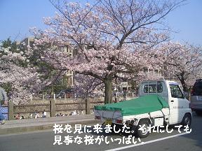 20050410122712.jpg