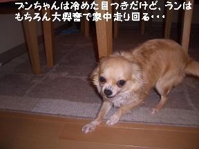 20050413083500.jpg