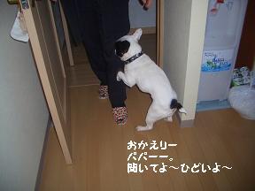 20050416102001.jpg