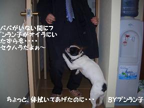 20050416102021.jpg