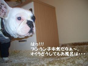 20050420232859.jpg