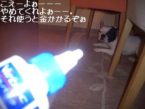 20050426011134.jpg
