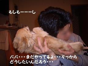 20050501215431.jpg
