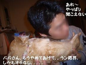 20050501215441.jpg