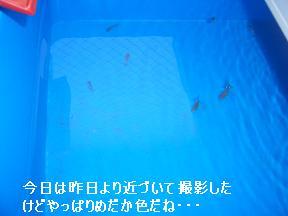 20050518110535.jpg