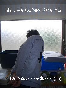 20050520102644.jpg