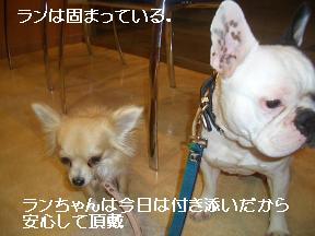 20050528094733.jpg