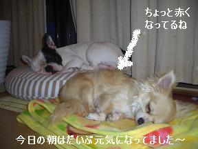 20050530105649.jpg