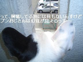 20050603003547.jpg