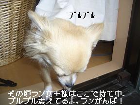 20050603003554.jpg