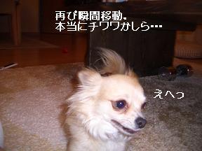20050607001004.jpg