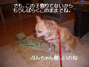 20050611093457.jpg