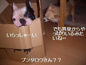 20050705213759.jpg