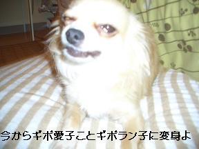 20050707223334.jpg
