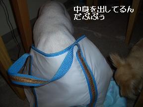 20050718185049.jpg